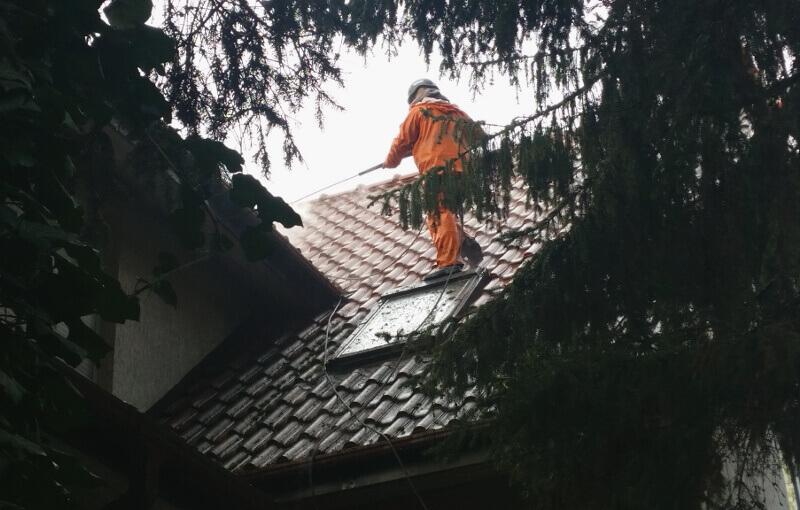 xdoczyszczanie dachu z mchu i porostow